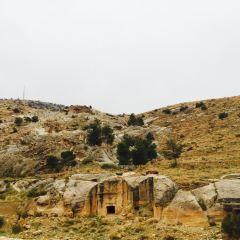 페트라 여행 사진