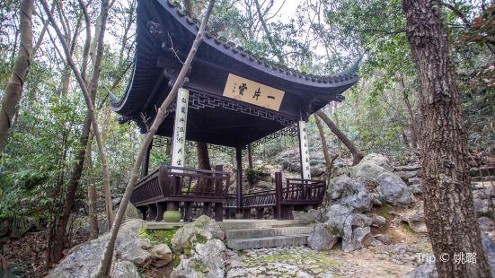 Eight Sights of Longjing