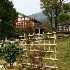 Dayangshan Botanical Garden Scenic Area User Photo
