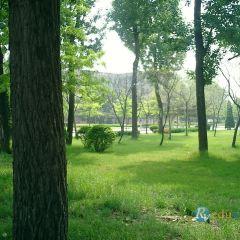 대련이공대학  여행 사진