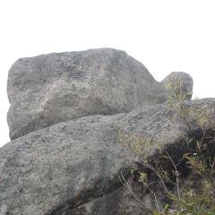二龜聽法石用戶圖片
