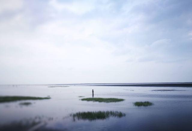 가오메이 습지