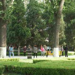 Longshan Park User Photo