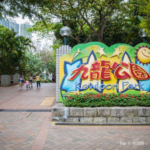 Kowloon Park