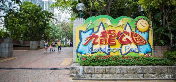 Kowloon Park3