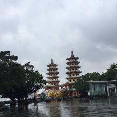 Dragon and Tiger Pagodas User Photo