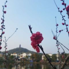 가오춘현 국제 도시 투어 리조트 여행 사진