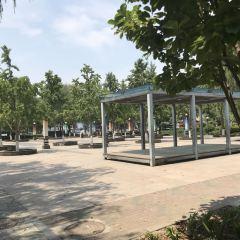 Manchun Park (East Gate) User Photo