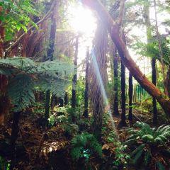 Staglands Wildlife Reserve User Photo