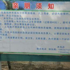 Dashu Island User Photo