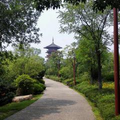 National City Wetland Park (East Gate) User Photo