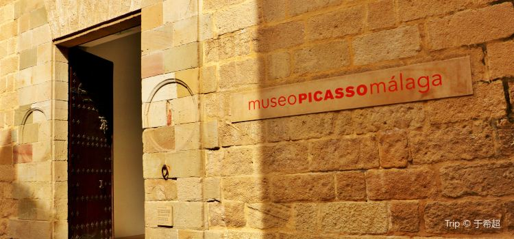 Museo Picasso Malaga2