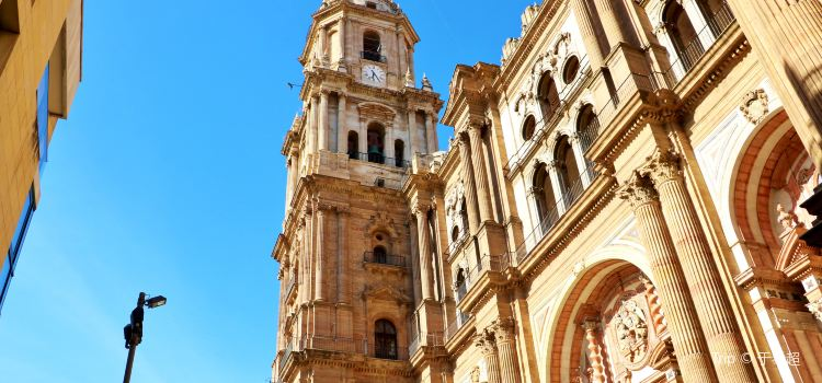 La Santa Iglesia Catedral Basílica de la Encarnacion3