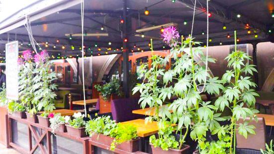 Bar BQ Cafe