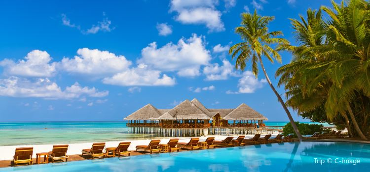 Medhufushi Island Resort Travel Guidebook Must Visit