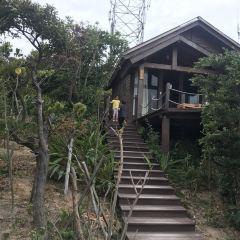 남양산섬 여행 사진