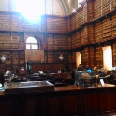 Biblioteca Angelica User Photo
