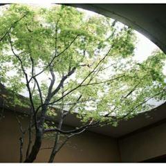 Kahitsukan, Kyoto Museum of Contemporary Art User Photo