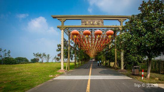 Gaochun International Cittaslow Tranquil