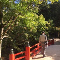 Momijidani Park User Photo