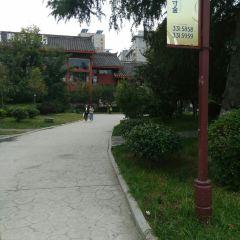 興安公園用戶圖片