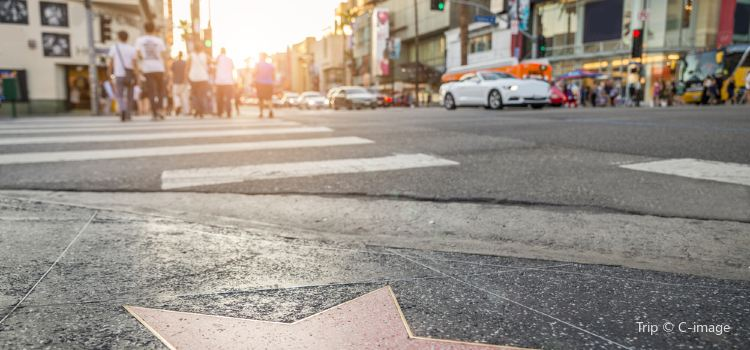 Hollywood Walk of Fame3