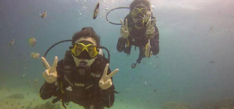 Doljo Beach Diving1