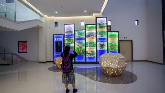 Pingyuan Museum