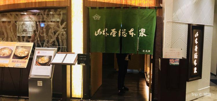 Yamamotoyasohonke Towersten3