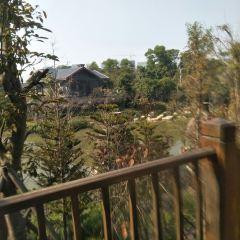 Midea Egret Lake Hot Spring User Photo