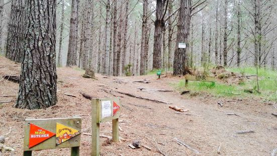 Woodhill Mountain Bike Park