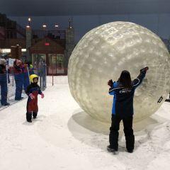 Ski Dubai User Photo