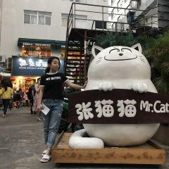 Zhang Mao Mao De Dian User Photo