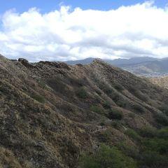 Honolulu User Photo