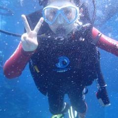 하이탕완 스쿠버다이빙 여행 사진