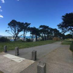 Mount Victoria User Photo
