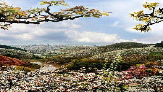 青山湖國家濕地公園