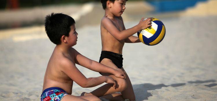 China's Dead Sea3