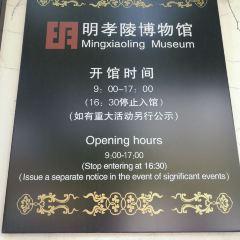 明孝陵博物館用戶圖片