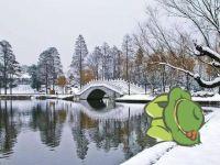 你沒回家的小蛙在武漢可能被做成了……