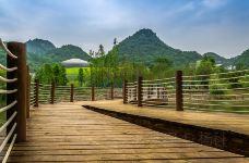 花溪国家城市湿地公园十里河滩景区-贵阳-C_image