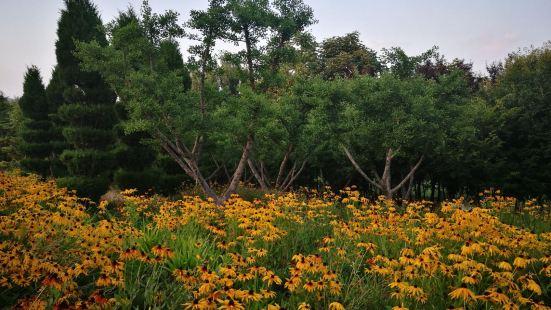 桂河濕地公園