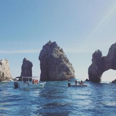 Los Cabos Tarzan Boats User Photo