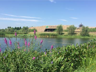 洋湖·沃野自然學校