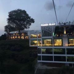 마운트 페이버 케이블카 여행 사진
