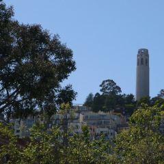 코이트 타워 여행 사진
