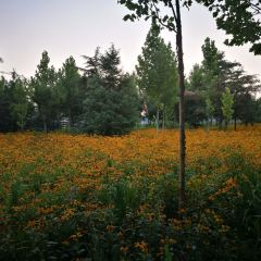 Juli Park User Photo