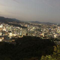 남산 케이블카 여행 사진