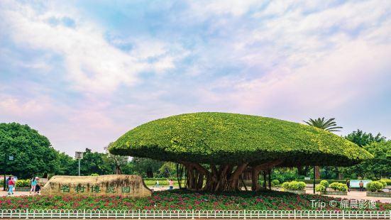 名樹博覽園