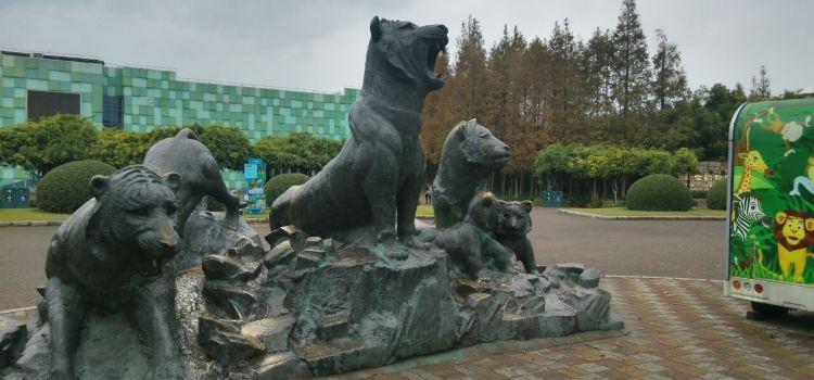 上海野生動物園賽狗競技場2